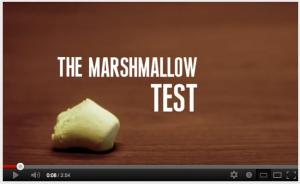 Marshmallow screenshot