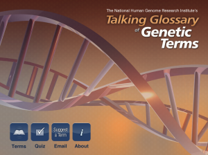 Launch screen of the glossary.