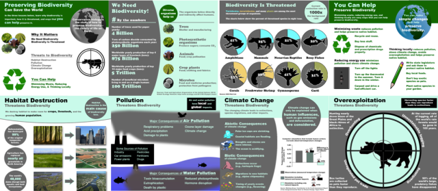Biodiversity graphics