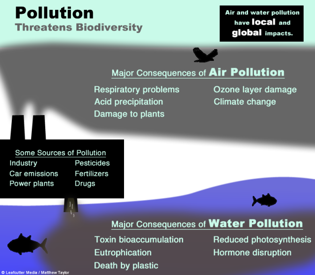 Pollution Threatens Biodiversity