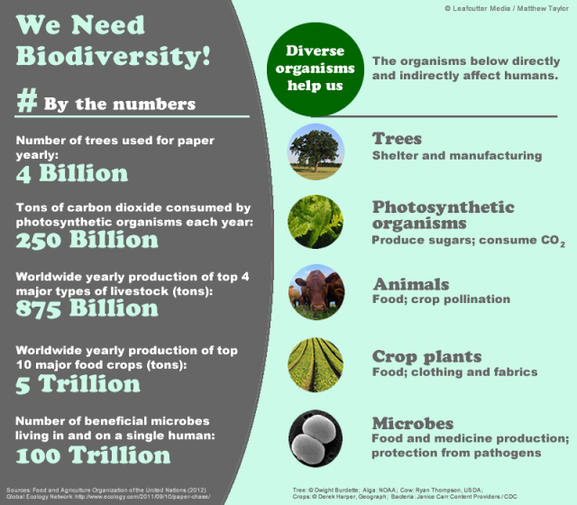We Need Biodiversity