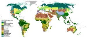 Biomes Map