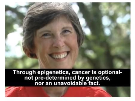 Epigenetics misconceptions